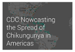 Nowcast Predictions for Local Transmission of Chikungunya Virus